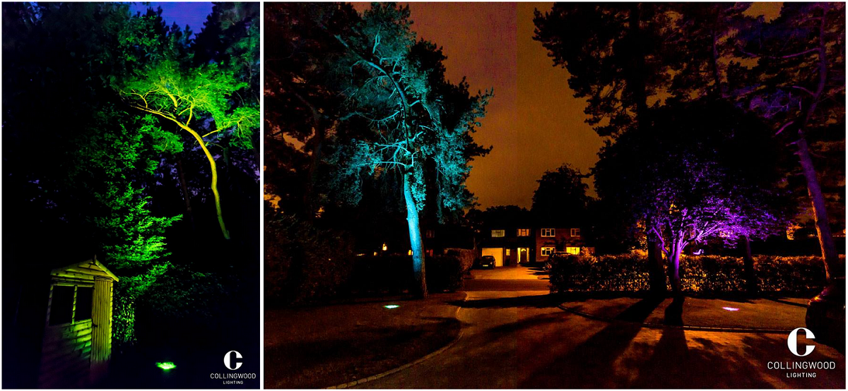 tree canopies both  sc 1 st  Direct Trade Supplies & Collingwood Lighting Lifestyle Shots